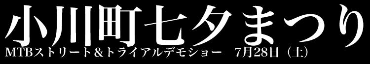 小川町七夕まつり