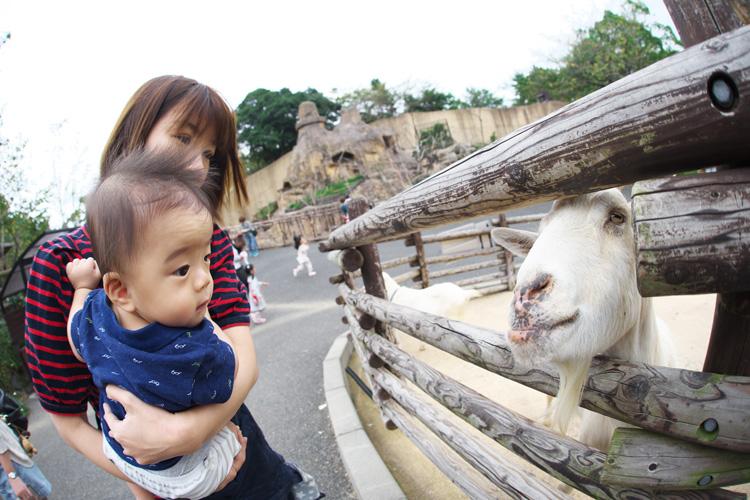北九州に行って奥さんと息子の叶大に会ってきました