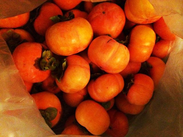 叔父さん宅で採れた柿