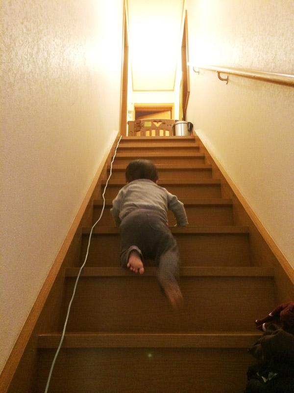 階段をスゴイ勢いで上れるようになった叶大
