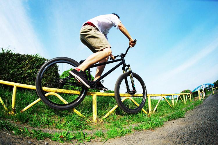 MTB マウンテンバイク SHAKA 多摩川河原サイクリングロード ダブルペググラインド