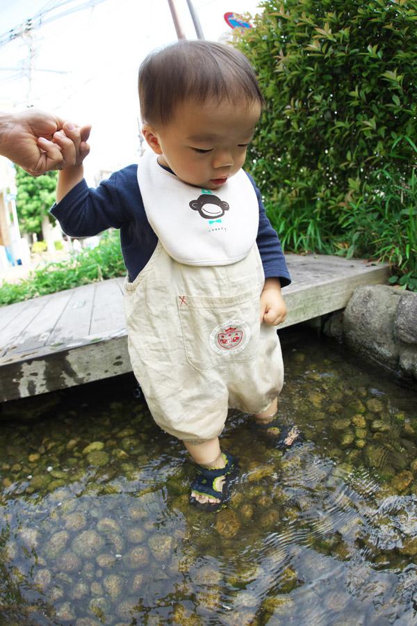 Tevaのキッズ用サンダルを履いて近所の小川で遊ぶ叶大