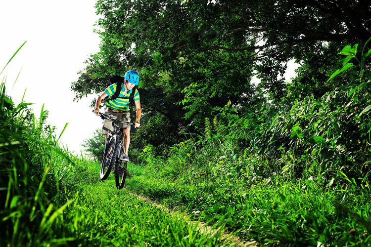 MTB マウンテンバイク YAMADORI 1st 26 多摩川河原サイクリングロード ミミズだらけの川沿いの小道を行く