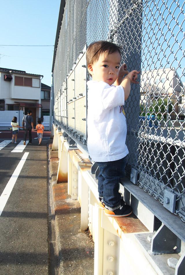新幹線を見るために橋の金網にへばりつく叶大