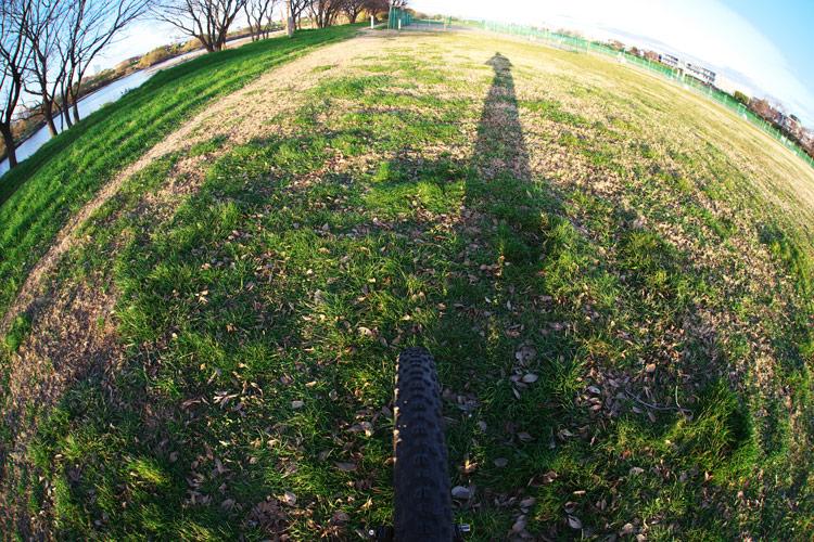 多摩川河原ダートコース 草地