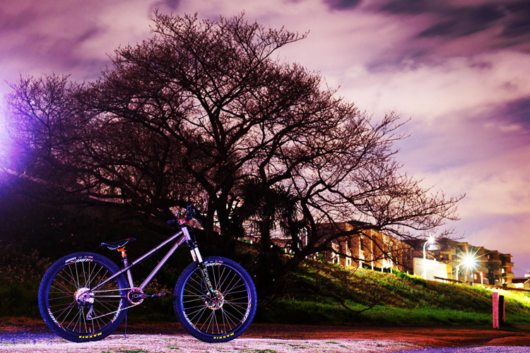 多摩川河原のまだ咲いていない桜の前でcroMOZU275を撮影