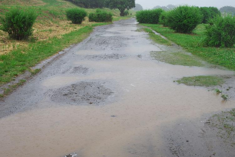 雨の多摩川河原の路面状況 水たまり