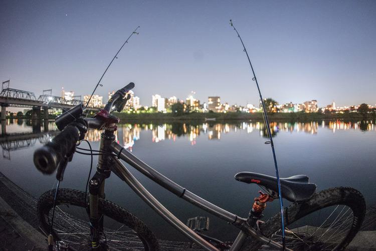 家の近所の多摩川河原でのスズキ(シーバス)釣り