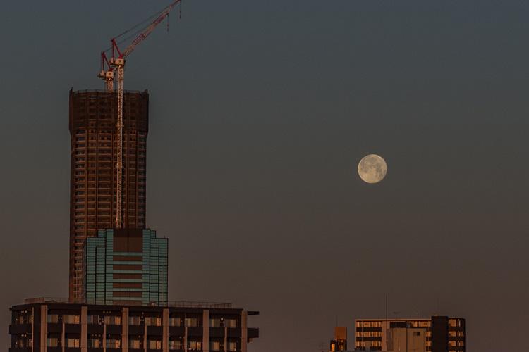 朝活BIKEで見た月