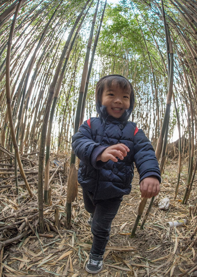 多摩川河原の竹林のトンネルを進む叶大