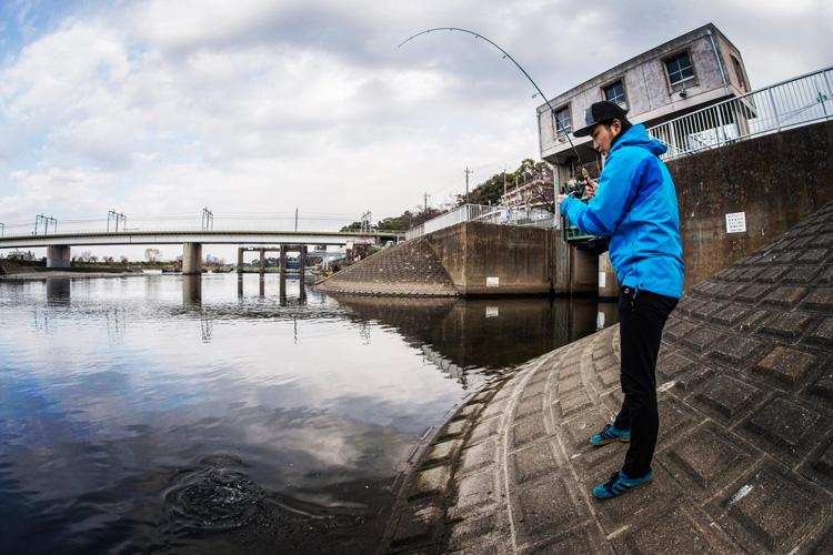 朝活BIKE&FISHで多摩川丸子橋付近で同僚がマルタウグイを釣りました