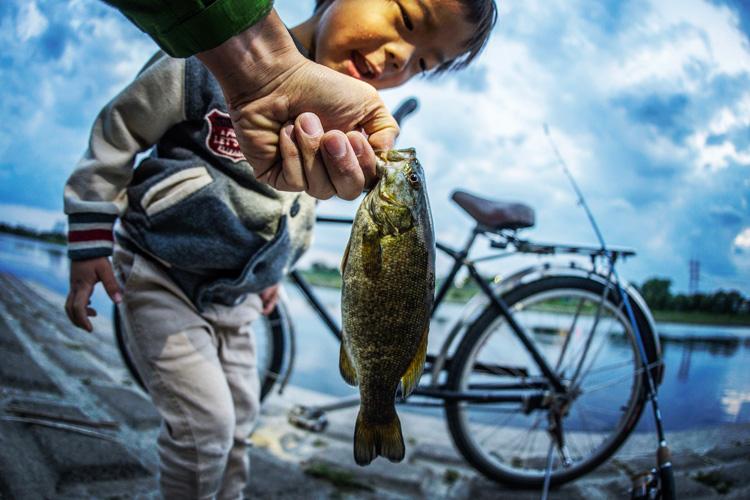 息子と夕方BIKE&FISHして釣れたスモールマウスバス