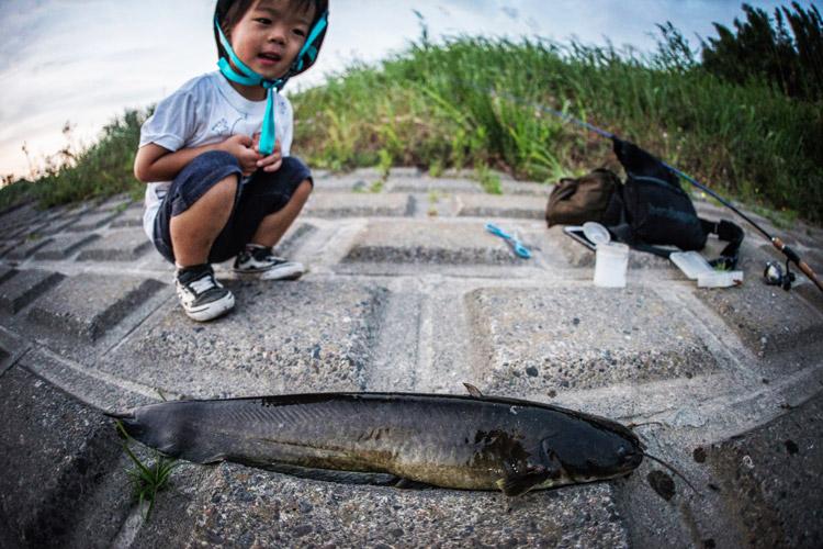 叶大と釣りをして60cmのナマズをGET