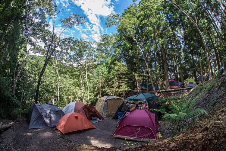 家族で初音楽フェス参加 キャンプ参加 テント設営