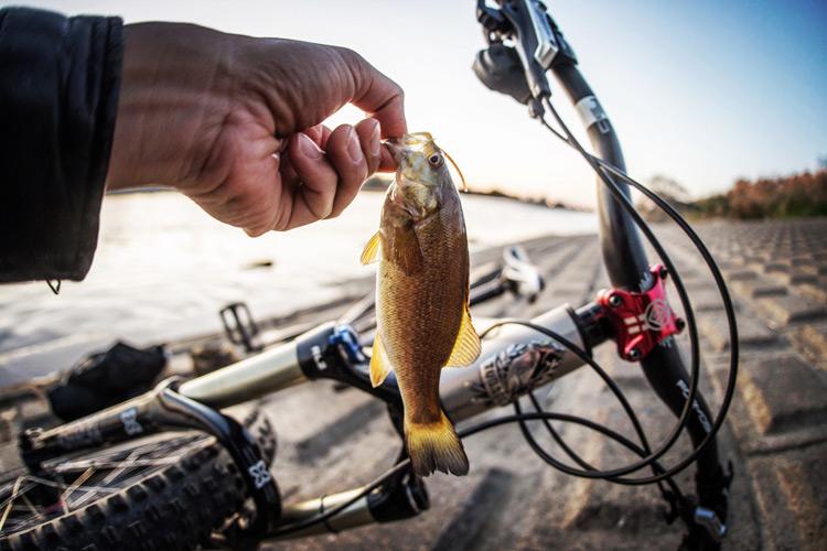 ドロッパーポスト BIKEYOKE REVIVEをインストールした小川輪業でドロッパーポスト BIKEYOKE REVIVEをインストールしたcroMOZU275と多摩川河原で釣りをしてスモールマウスバスを釣る