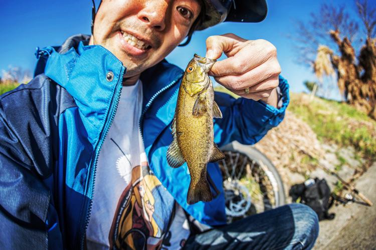 多摩川BIKE&FISHで釣れたスモールマウスバス