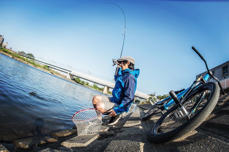 多摩川河原 BIKE&FISH SHAKA24 ナマズがヒット中
