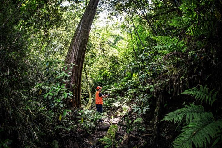 葉山でイノシシ罠猟の講習