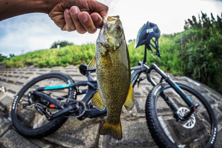 多摩川河原 BIKE&FISH スモールマウスバス