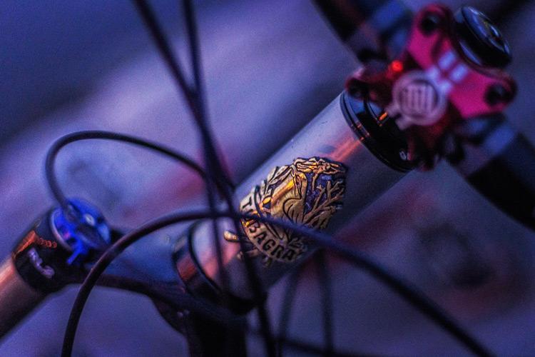 Rui & Aguri Fine Jewelry製MOZUヘッドバッジ GOLDを付けたcroMOZU275 5th 多摩川河原