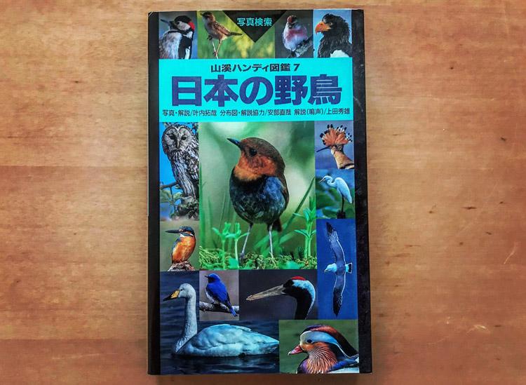 新フレームの名前決め 日本の野鳥 図鑑