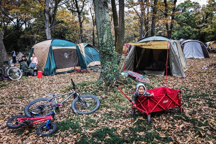 秋ヶ瀬の森バイクロア8 キャンプエリア テント泊