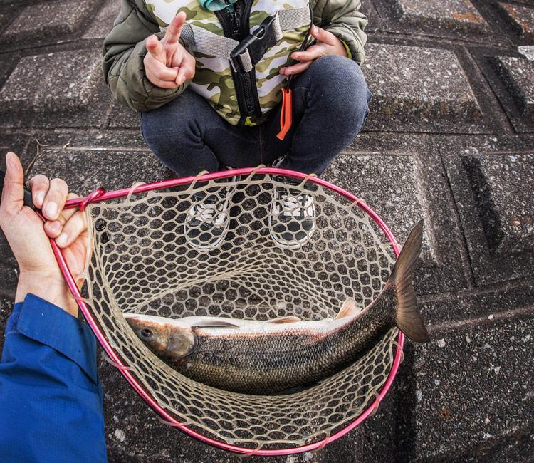 多摩川 BIKE&FISH 叶大 マルタウグイ釣り