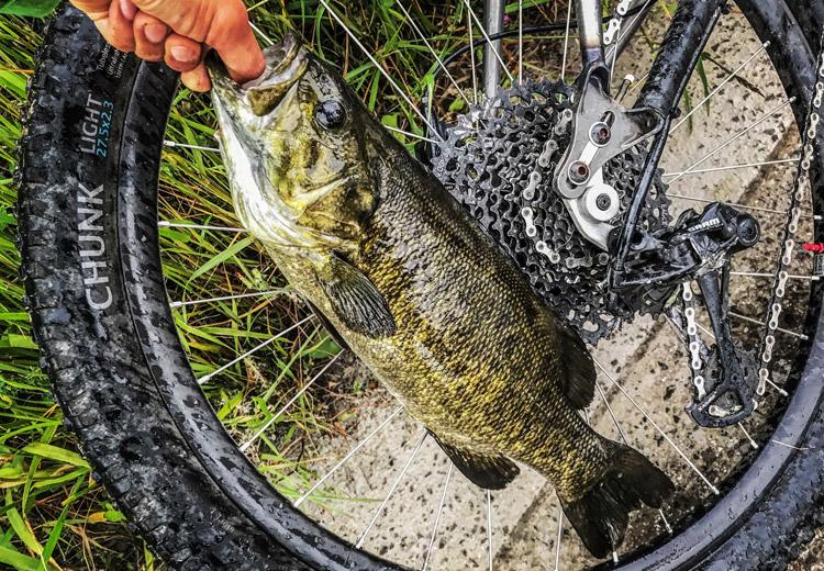 朝活BIKE&FISHで釣れたスモールマウスバス  メタルバイブ 47cm