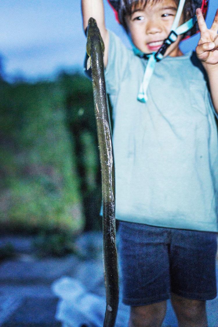 多摩川河原 ウナギを釣った叶大