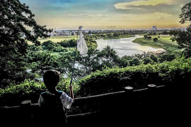 多摩川河原 多摩川台公園 昆虫採集をする叶大
