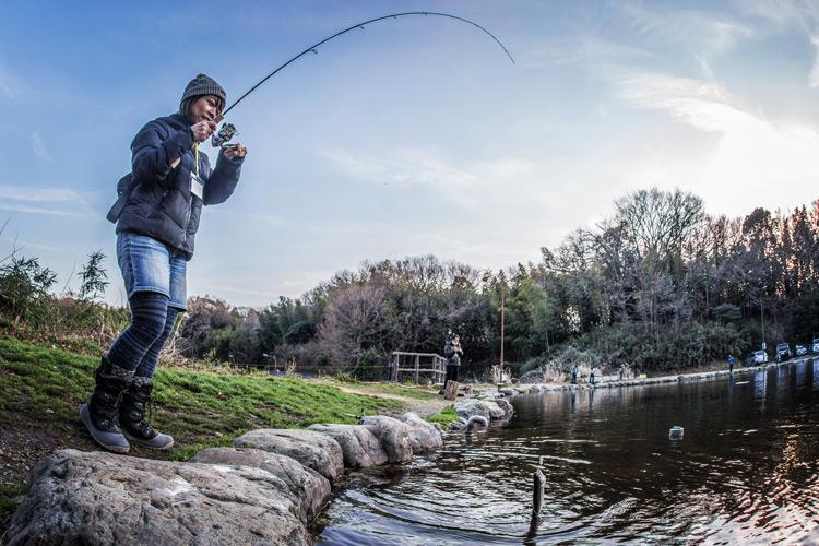 王禅寺 エリアトラウト 奥さんがポッパーでニジマスを釣った