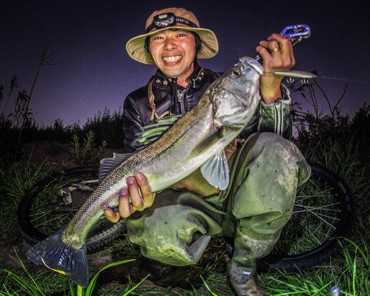 多摩川バチ抜けシーバス釣り BIKE&FISH