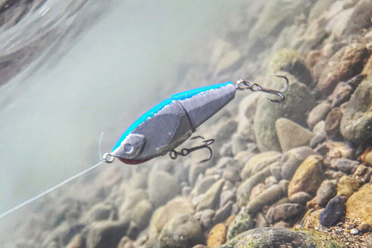 3Dプリンター オリジナルジョイントミノー 多摩川BIKE&FISH
