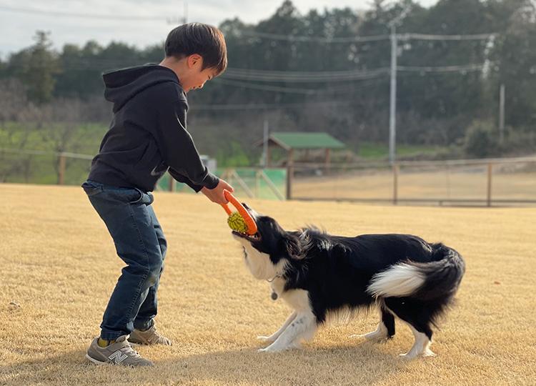 かすみがうらドッグ&MTBパーク 家族キャンプ 犬と遊ぶ叶大