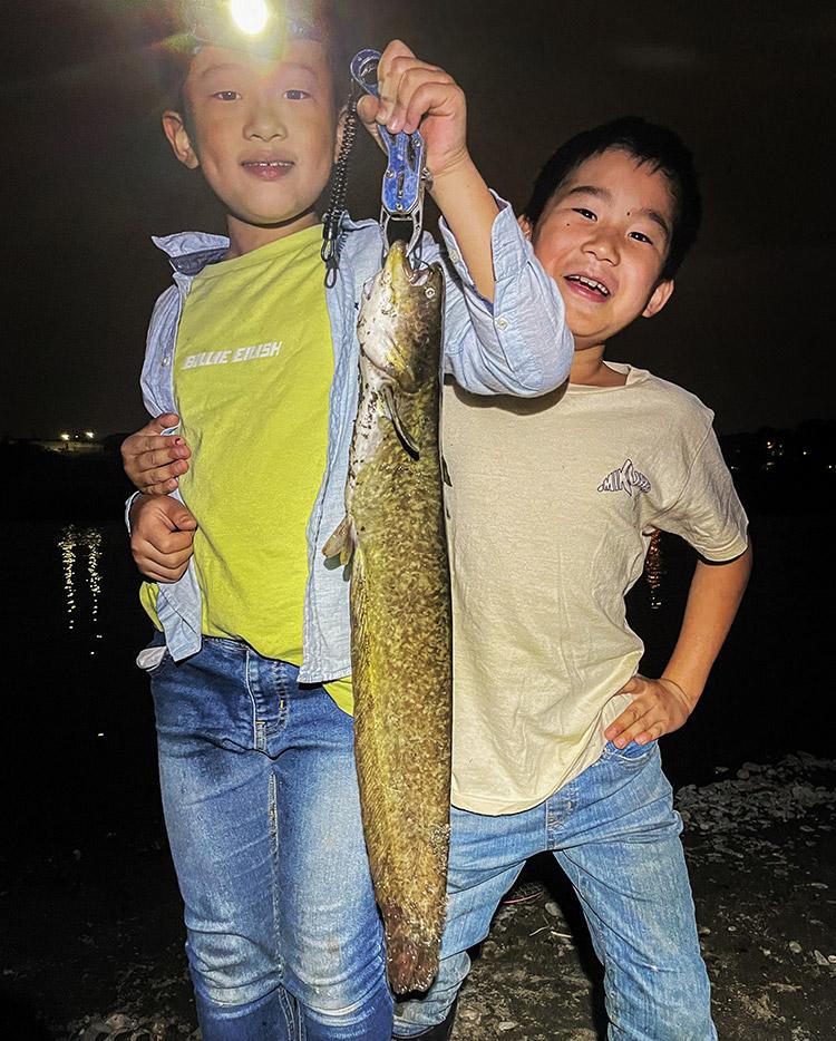 夜活BIKE&FISH ナマズ リュウ君 カイト君