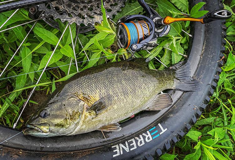 BIKE&FISH ゲイリーシュリンプで釣れたスモールマウスバス